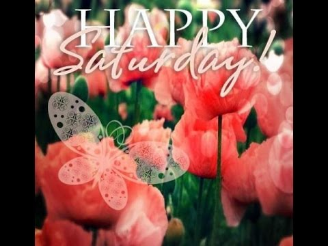 Happy Saturday videos