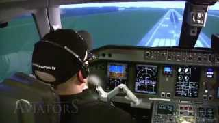Can a private pilot land an airliner? (FREEview 105)