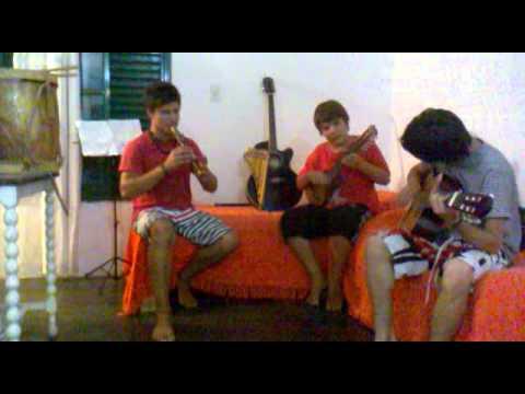 Vienes y te vas - Los Tekis (quena - charango - guitarra)