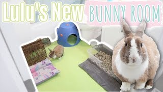 Lulu's New Bunny Room