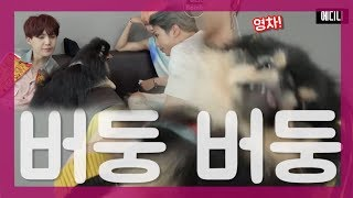 "[BTS] (방탄소년단)  "" 연탄: 저는 오늘 아주 힘든 하루를 보냈어요.. "" (Feat. 부럽다)"