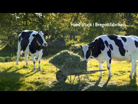 Food truck i Bregottfabriken
