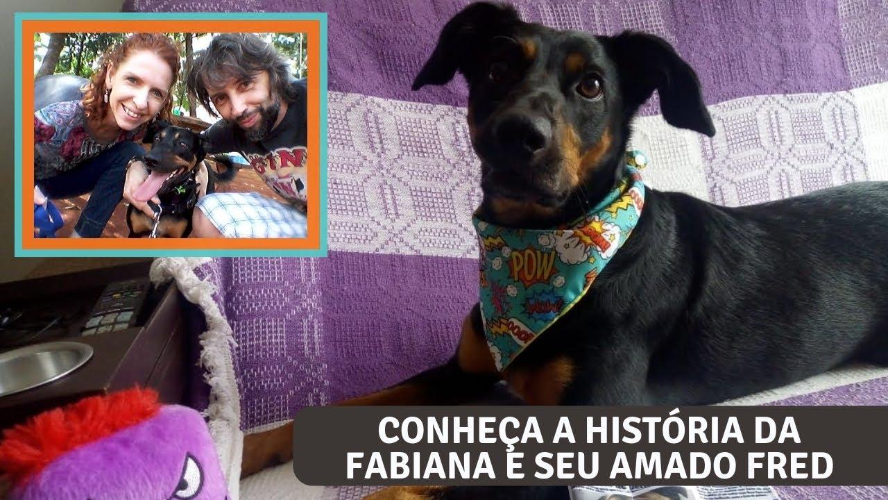 Família PetCoaching: a história de superação da Fabiana e seu cão, o Fred