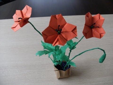 Jak zrobić kwiaty z papieru - mak polny