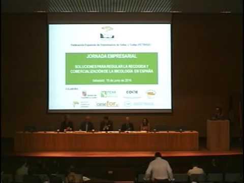 Jornada Mañana- Soluciones para la regular la recogida y comercialización de la micología en España