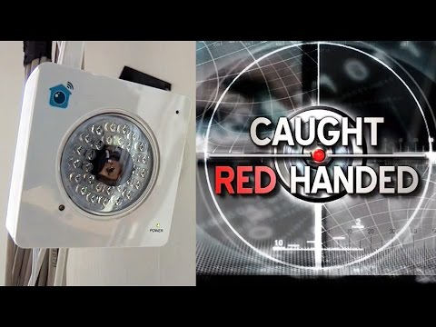 """BBC """"Caught Red Handed"""" - How To Catch An Office Burglar with Y-cam HomeMonitor Cloud Camera"""