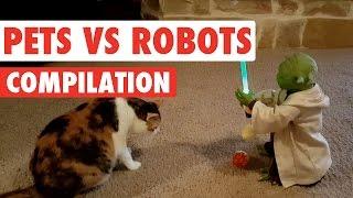 Pets Vs Robots Video Compilation 2016