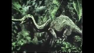Planéta záhad  8 - Dobre utajené príšery