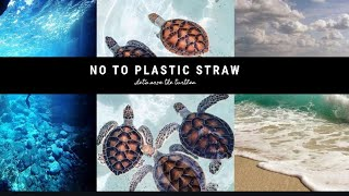 REUSABLE STRAW CAMPAIGN! | Save the animals | save Mother Earth