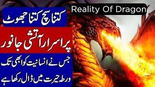 REALITY OF DRAGON | FIRE BIRD | DROGON MOVIES | KHOJI TV