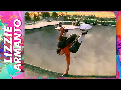 Video BIRDHOUSE Skateboard complet STAGE 3 Armanto Butterfly