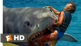 Jaws: The Revenge (5/8) Movie CLIP - The Banana Boat (1987) HD - YouTube