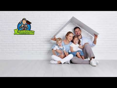 Best Carpet Cleaning Company Homestead