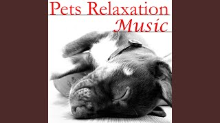 Calm Waves for Relaxing Pets