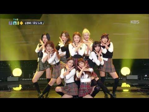 더 유닛 The Unit -  유닛 노랑 마음 속으로 '심쿵해'.20171125