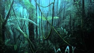 Rainforest Beat (African Percussion Jungle Beat) Relax and Meditation Spa