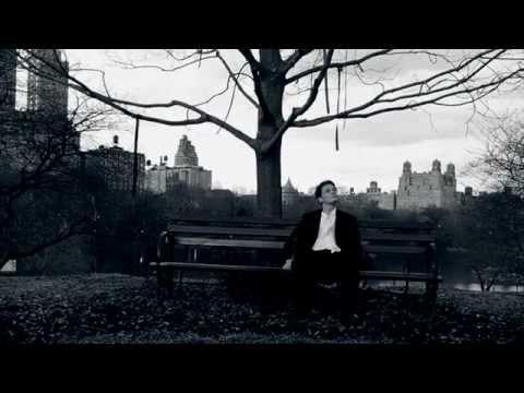 U2 - New York (Unofficial video)