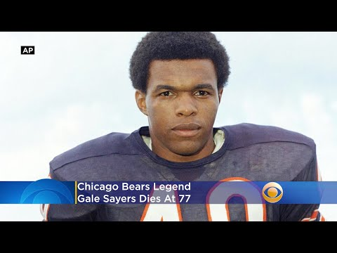 Gale Sayers, Chicago Bears Legend, Dies At 77