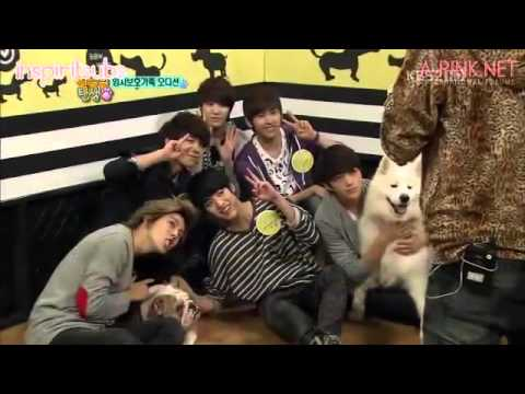 [ENG SUB] 111112 Birth of a Family Ep 1 - INFINITE & A Pink cuts