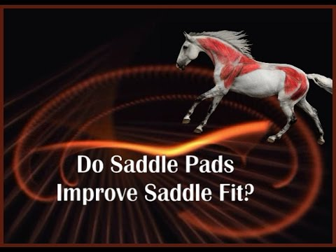 Do Saddle Pads Improve Saddle Fit? by Jochen Schleese