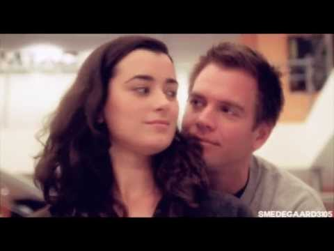 in ncis are tony and ziva dating Tony and ziva from ncis can never be replaced they stole the hearts of the fans and are deeply missed however, there is an opening for a cute, will-they-won't-they relationship in the office.