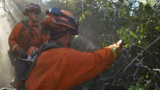 California inmates fight fires for a buck an hour and love it