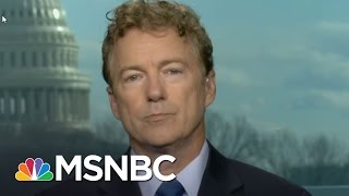 Sen. Rand Paul: Russia Issue 'Political Witch Hunt' | MTP Daily | MSNBC