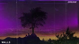 Slushii - WALLS  // DREAM . 16