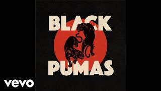 Black Pumas - Know You Better (Official Audio)