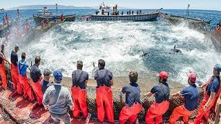Everyone should watch this Fishermen's video - Big Catch Hundreds Tons Fish With Modern Big Boat