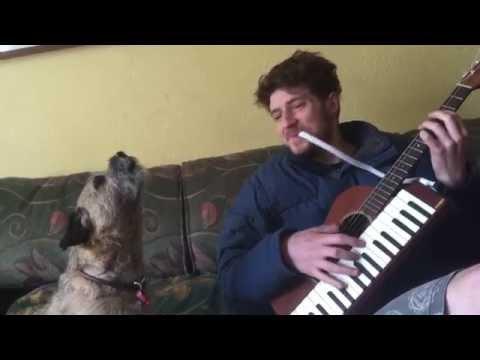 Талентирано куче пее блуз заедно со неговиот сопственик