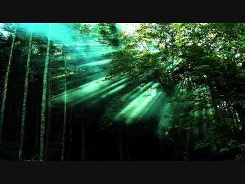 Zoo Brazil - Crossroads & Enigma - La Puerta Del Cielo (Dkn Remix)