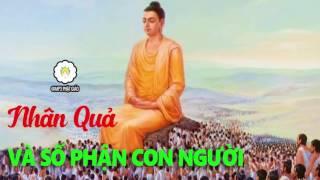 Kể Truyện Đêm Khuya - Nhân Quả Và Số Phận Con Người  - Những Lời Phật Dạy - MP3 Phật Giáo