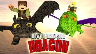 Minecraft | HOW TO TRAIN YOUR DRAGON CHALLENGE - Toothless is Captured! (DRAGONS)
