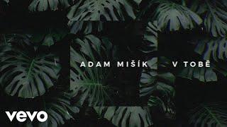 Adam Mišík - V Tobě (Lyric Video)