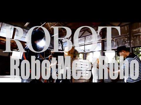 ROBOT/RobotMeetRobo