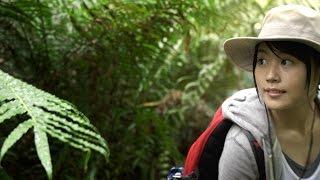 大自然への挑戦:有村架純「沖縄の亜熱帯雨林」編