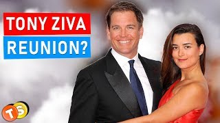 Michael Weatherly hints at NCIS return for Ziva David reunion in Season 17