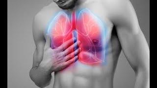 """4 loại thực phẩm """"vàng"""" tốt nhất cho phổi: Người có bệnh thì nên ăn nhiều để giảm viêm?"""