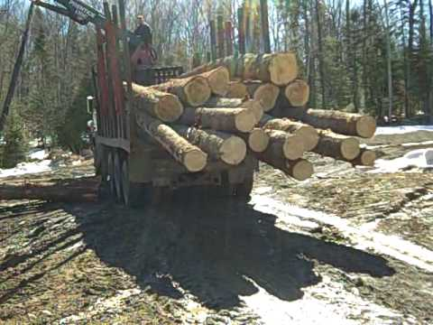 39 Bald Mountain Camps Construction Project