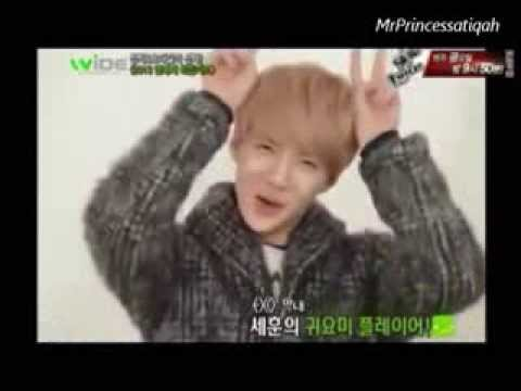 All About Sehun (세훈)_EXO - Funny, Cute, Aegyo & Gwiyomi Compilation