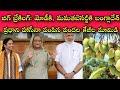 Bangladesh PM sends 2,600 kg of mangoes to PM Modi, CM Mamata