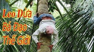 Leo dừa mạo hiểm. Cụ già 77 tuổi  Leo dừa đang Hot trên  YouTube của Thánh Lầy Vlogs phải nể mặt P1