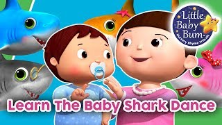 Learn The Baby Shark Dance | Learn With LBB | Little Baby Bum