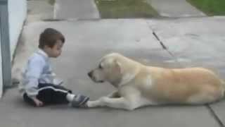 Little Boy w Down's Syndrome & His Dog - Unconditional Love of Man's Best Friend