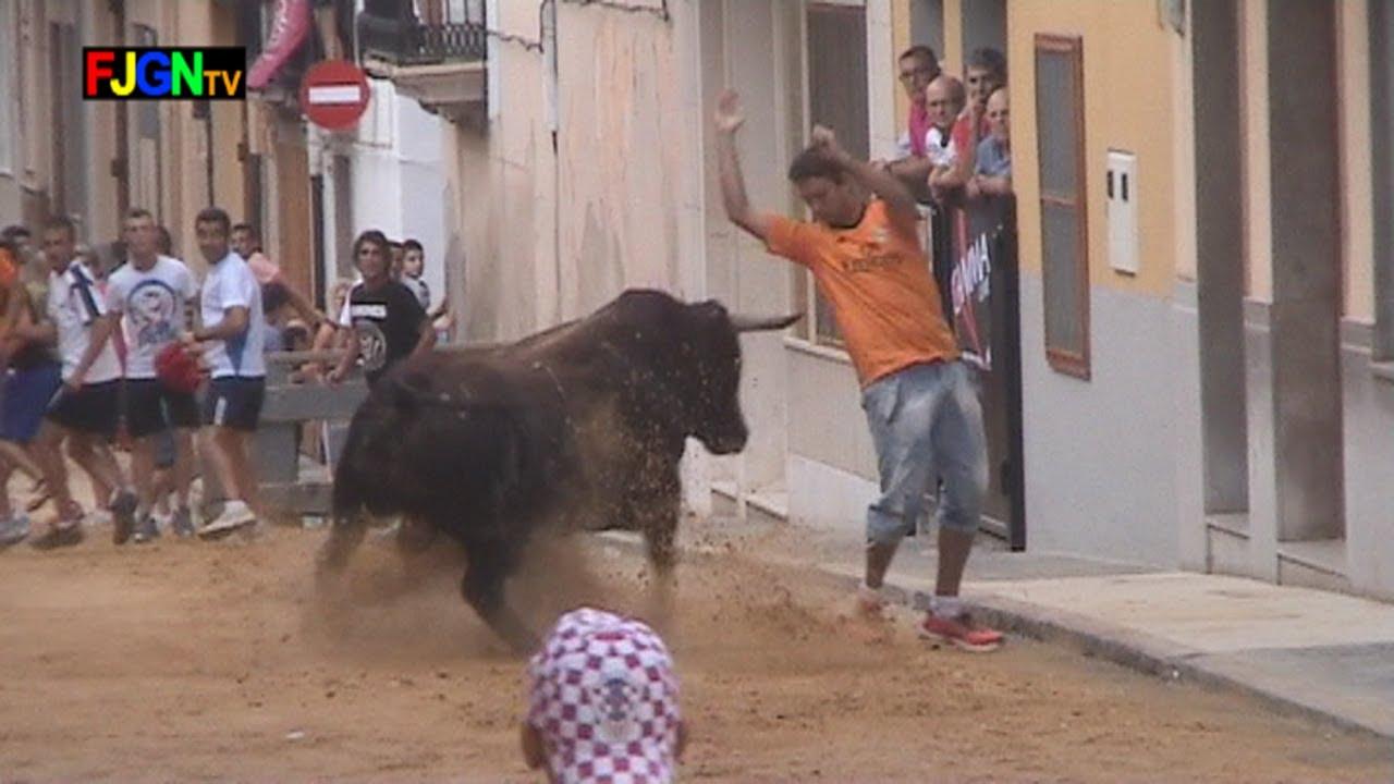 Toros Sant Roc 2013 - La Vilavella