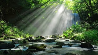 Beautiful Instrumental Hymns about the Mercy of God | Soothing, Relaxing, Peaceful