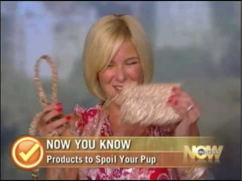Dara Foster Pet Fashion Expert on ABC News Now [annotated]