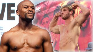 Floyd Mayweather Reacts To Logan Paul Fight & Size Difference Ahead Of Boxing Match