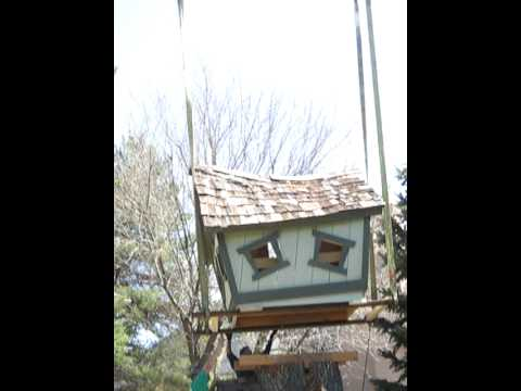 Tree House Placement